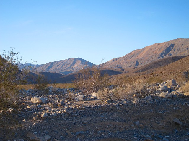 View of Cottonwood Canyon from the trail head