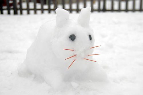 odin's snow bunny.