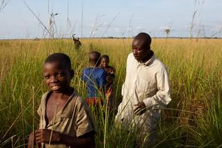 Congo Savanna 1