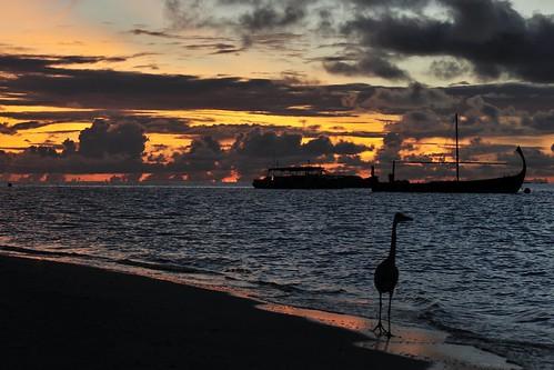 travel sunrise nikon tripod fx maldives d700 velassaru