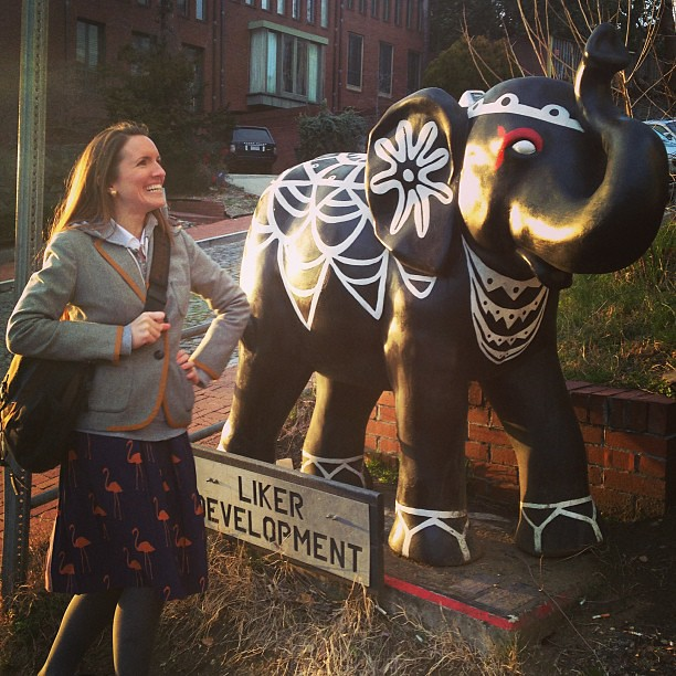 @bethaevans just chilling with an elephant while waiting for her boo @jce37 #DCLife #NewlywedDCLife