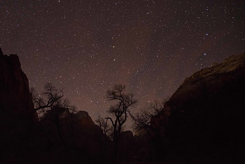 trees sky mountains nature night stars landscape utah nikon silhouettes canyon zionnationalpark coth supershot 2013 starrysky absolutelystunningscapes damniwishidtakenthat coth5 d800e dailynaturetnc13