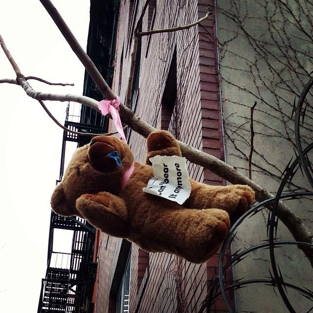 Hanging Bear by anitam_com