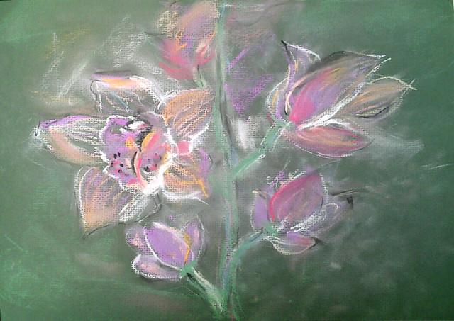 Орхидея пастель 3.03.13
