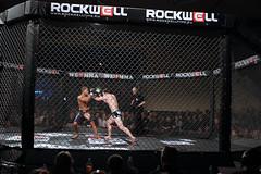 Erste Fights für WE LOVE MMA stehen