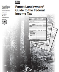 Timber forest landowners tax guide