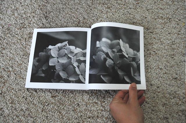 DSC_2765 copy