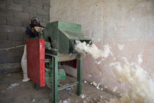Iraq: Helping widows and disabled people start small businesses (photo 12/14)