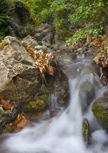 Μακρυνίτσα, βόλτα στο βουνό... by Dimitris Amountzas