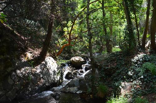 Bach vom Wasserfall zur Forellenzucht