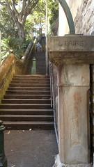 Buttle_stairs,_Woollomoolo[1]