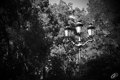 Iluminando el ambiente
