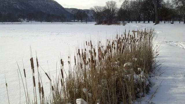 Lake Winona (#2)