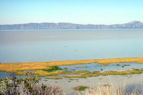 IMG_1835: Lago Chapala