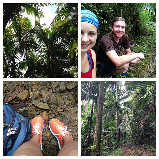 Puerto Rico day four: hiking in the rainforest.