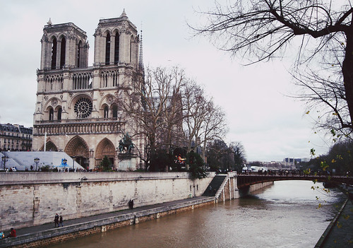 Notre Dame by the Seine