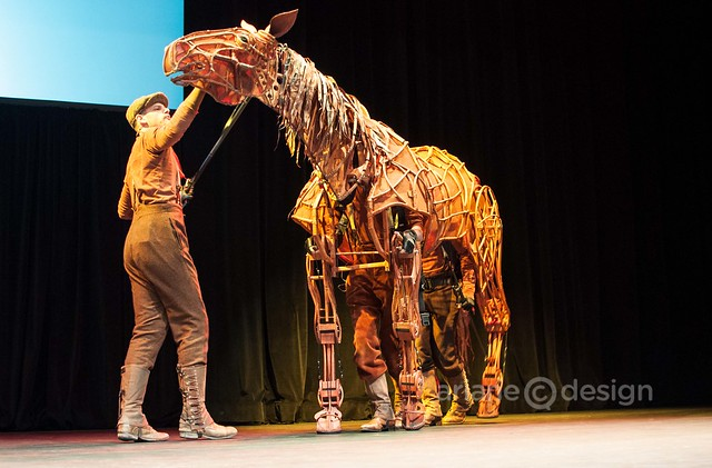 WarHorse at Broadway Across Canada-1