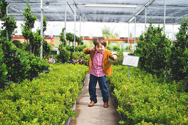 garden center dance party