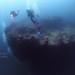 Apo Reef-Coron-Tubbataha 2013 with Oceana Maria