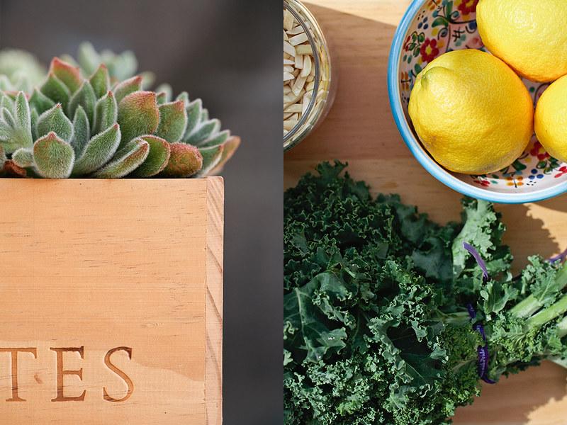 succulentbox&kalesalad_1_web