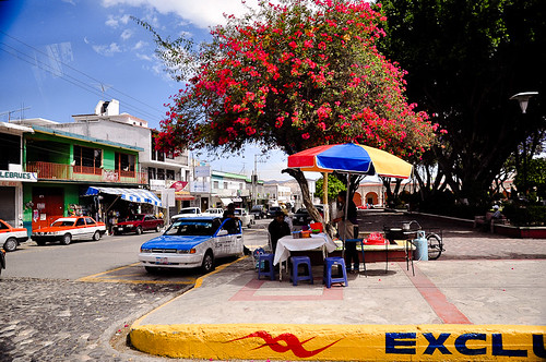 Tecomaxtlahuaca (03)