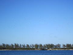 Junkanoo Beach & Cruise Ships (#7856)