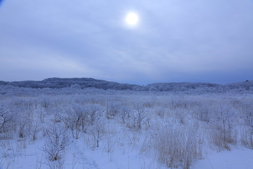 釧路湿原#10 塘路付近