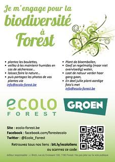 Faites des boulettes pour la biodiversité à Forest !
