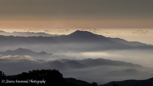 mist misty fog mountain mountaintop mountainside outdoor nature naturephotography landscape landscapephotography naturelovers depthfield morning sunrise canonphotography canonusers canon dslr t3i ef35350mmf3556lusm troodos cyprus lovecyprus ngc cloud sky skylovers