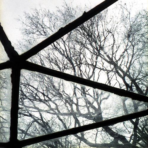 winter greenhouse by pho-Tony