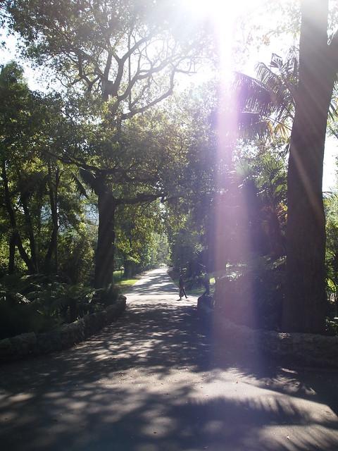 Spring in Melbourne 2012