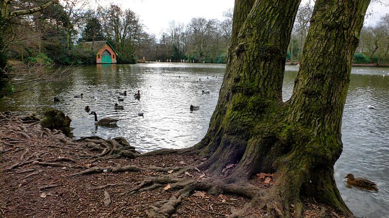 Hartsholme Park 2