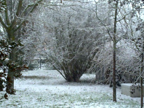 Giardino bianco... by meteomike