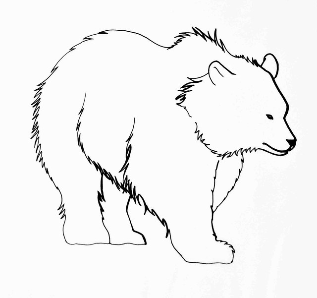 Line Drawing Bear : Bear line drawing flickr photo sharing