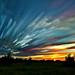 Sky Feathers by Matt Molloy