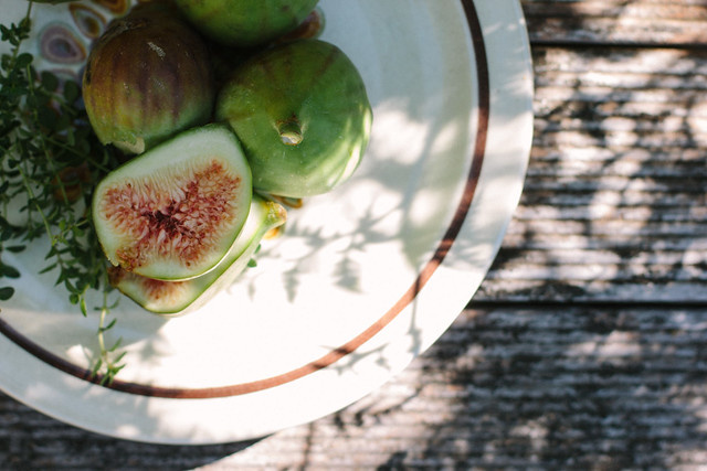 honey + thyme figs w/ greek yoghurt