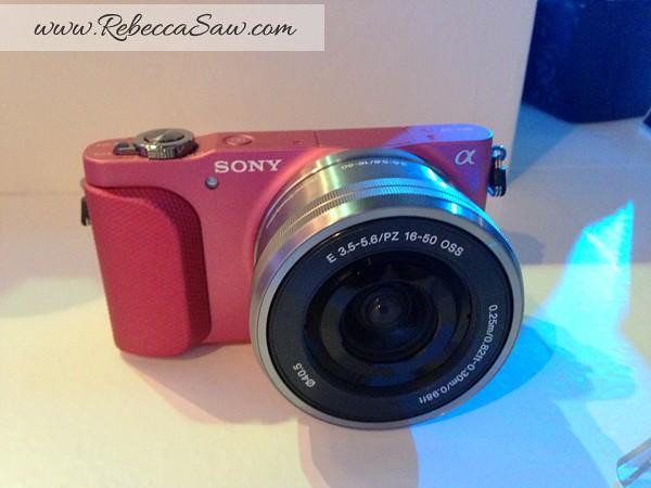Sony Alpha Experience 2013 - sony nex 3N image