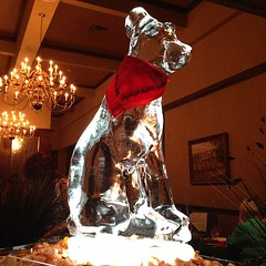 What's up, dog ice sculpture? Don't mind me, I'm just gonna eat the shrimp by your feet. Thanks for keepin' it cool.