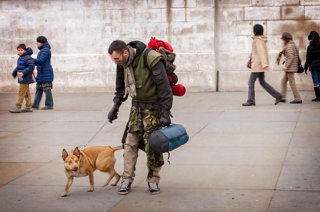 Viajar con perro es posible.