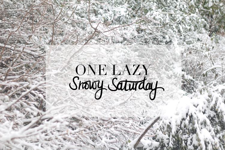 one lazy snowy sat