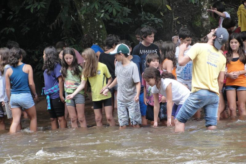 6ºs anos em Brotas - 2013