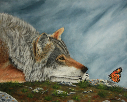 Wolf and Butterfly by Sid's art
