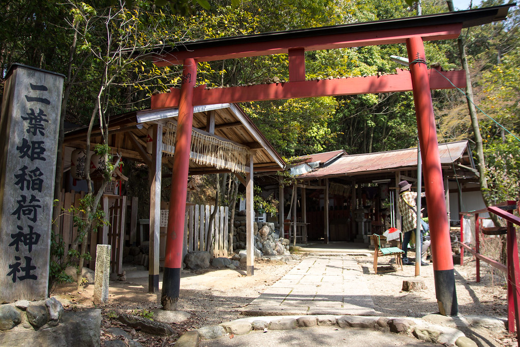 Kamigamo Shrine 2013