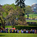 White House Gardens by angela n.