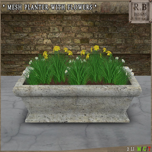 NEW - LIMITED PROMO ! *RnB* Mesh Planter with Flowers - Daisies (copy)