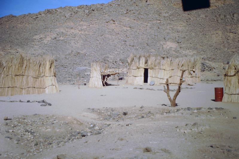 اجمل صحراء في العالم  - صفحة 2 8672856466_e1c91a780f_c