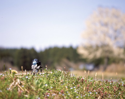 Field photographer