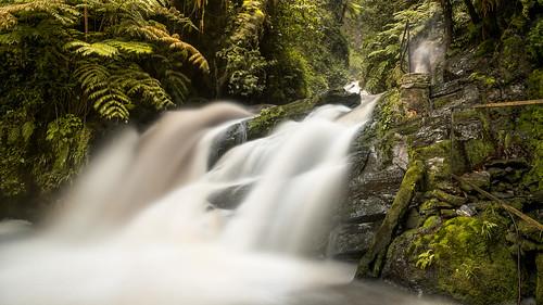 africa longexposure water forest waterfall rainforest rwanda nyungwe bwnd110filter fujifilmxpro1 fujinonxf14mmf28