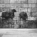 'Grafitti memories', Brussels by rei_urusei