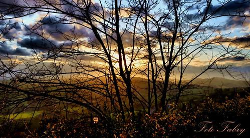 alberi nikon italia tramonto nuvole valle sole marche